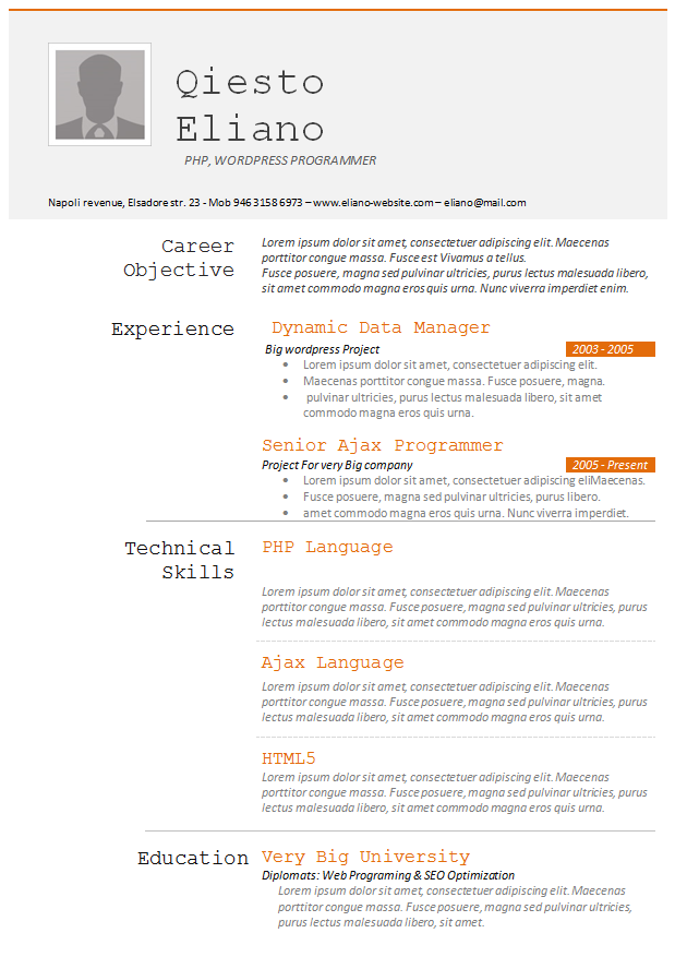 download programmers resume template - Specific Language Programmer Resume